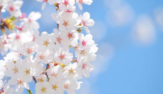 春到来!のはずなんですが…
