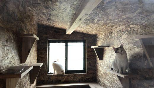 佐世保市梅田町でペット用の小屋を新設しました